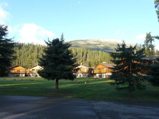 Becker's Roaring River Chalets: View from kitchen and front door
