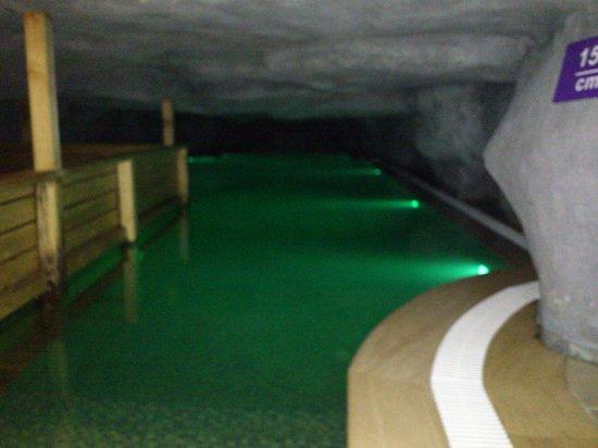 Amethyst Hotel Istanbul : la piscine