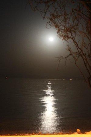 Dahab Paradise: Moon
