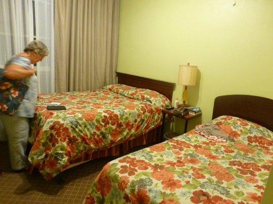 Adelaide Hostel: Private bedroom - twin