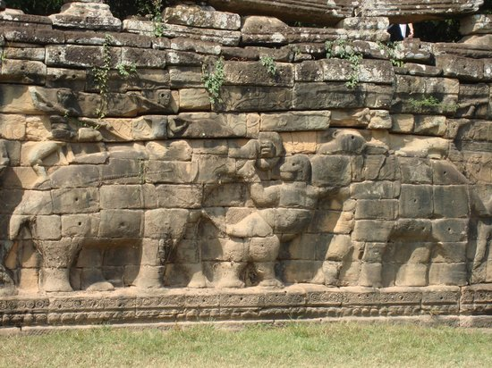 Cambodia Tourist Guide Association - Private Day Tours : Elephant Terrace 2
