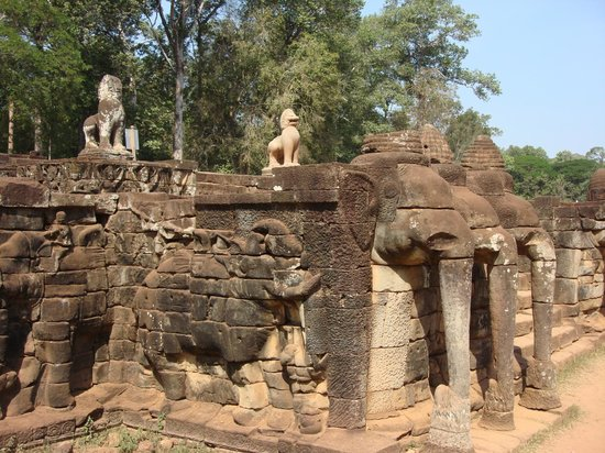Cambodia Tourist Guide Association - Private Day Tours : Elephant Terrace 1
