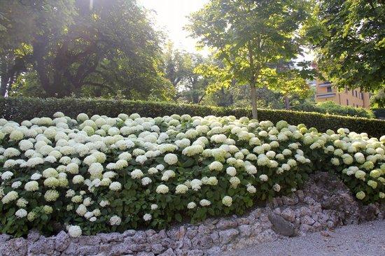 Villa d'Este: glorious gardens abound