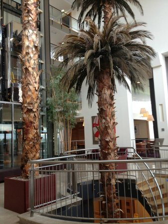 Radisson Blu Hotel & Spa, Galway : Who expects a palm tree in the lobby of a hotel in Galway?