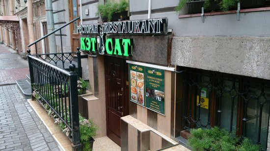 Cat Restaurant: Welcome to Cat