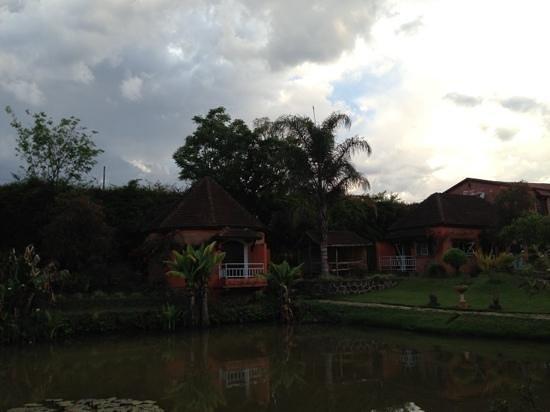 Hotel Green Park: pond