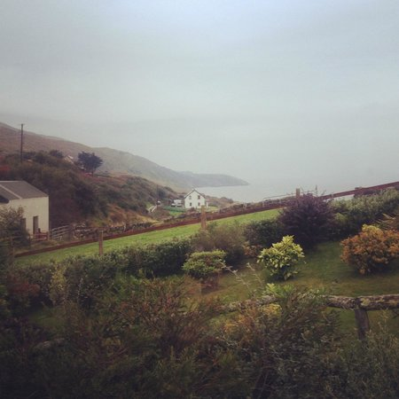 Seamount Farmhouse Bed & Breakfast : View from our bedroom - Gorgeous!!