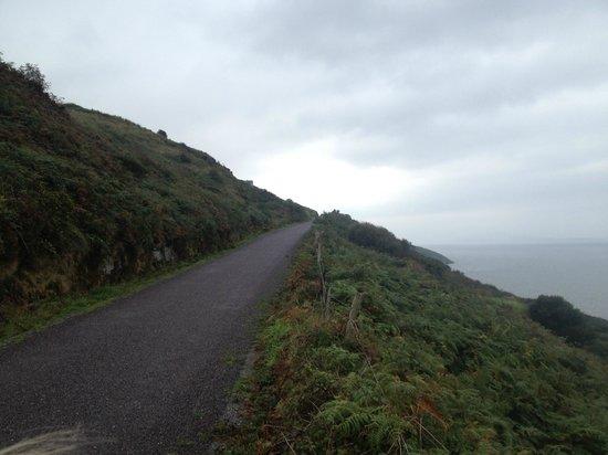 Seamount Farmhouse Bed & Breakfast : View of Peninsula heading North