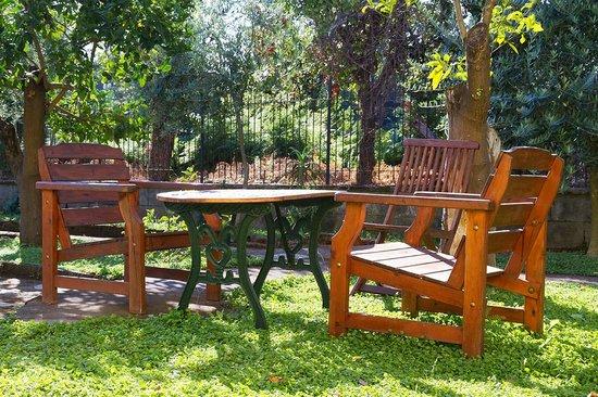 Bed and Breakfast Massico: giardino