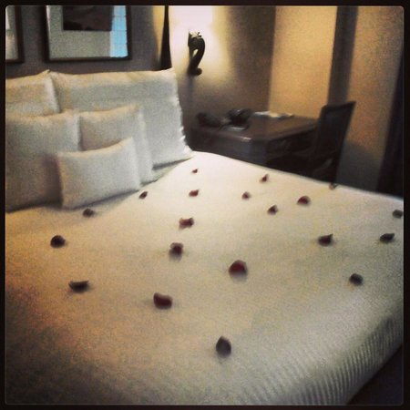 The Hotel Majestic St. Louis : Staff helped me create a romantic stay
