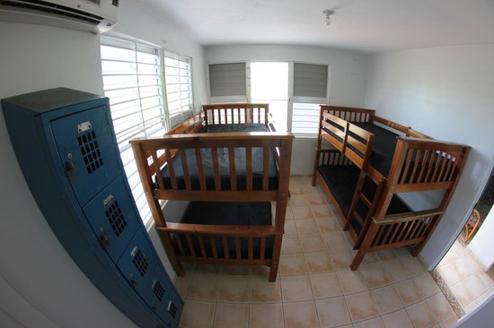 Hostal Tropical: Mixed Dorm w Bathroom in room