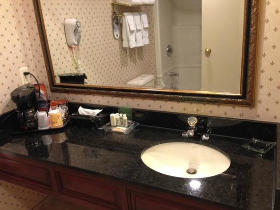 Holiday Inn Oakville @ Bronte: Bathroom vanity