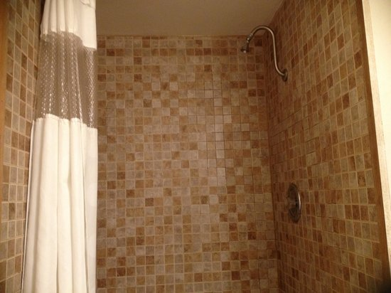 Americas Best Value Inn: Room #229 shower head
