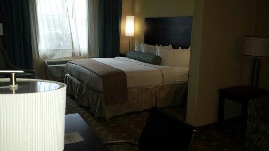 BEST WESTERN PLUS Fort Lauderdale Airport South Inn & Suites: King room