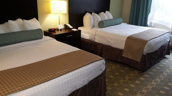 Best Western Plus Fort Lauderdale Airport South Inn & Suites: Double Queen