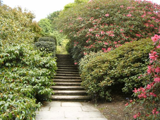 Bodnant Garden: gardens