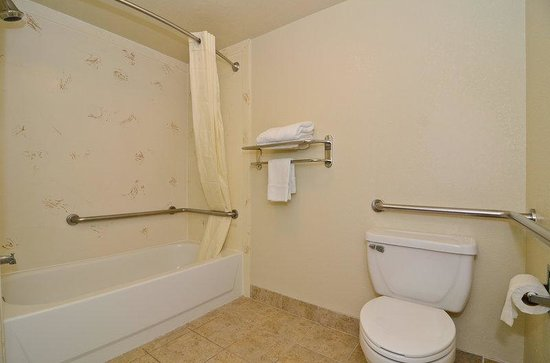 Travelers Inn and Suites Memphis: Mobility Accessible Bathroom