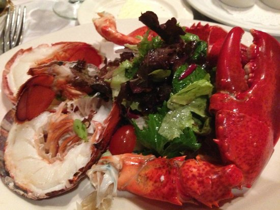 Waterfront Restaurant and Cafe: Maine Lobster Salad @ Waterfront