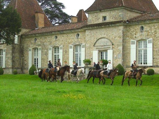 Château de Mazelières : Activité équitation