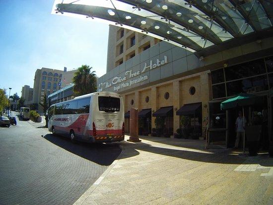Olive Tree Hotel: Esterno hotel