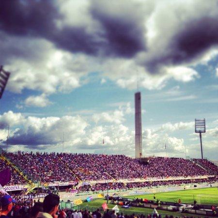 Stadio Artemio Franchi: View of maratona from the curva fiesole