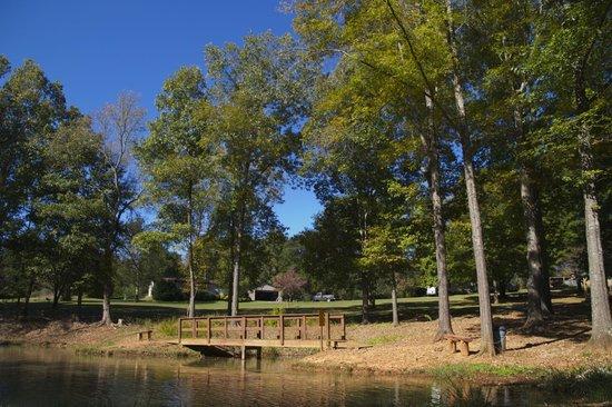 Sweetwater / I-75 / Exit 62 KOA: Fishing Pond