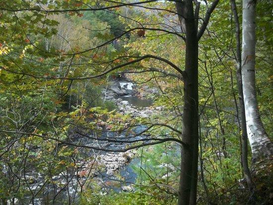 Jamaica State Park: The spillway at Ball Dam