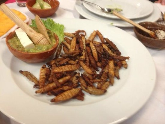 Restaurante Arroyo: Gusanos for tacos!   Yes, they're worms!