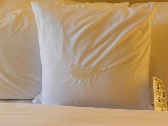Homewood Suites by Hilton St. Petersburg Clearwater : Pillows from heaven