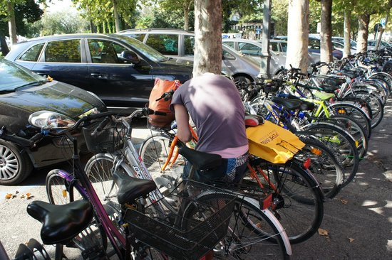 Hotel Villa Pagoda : хорошо взять в прокат велосипед