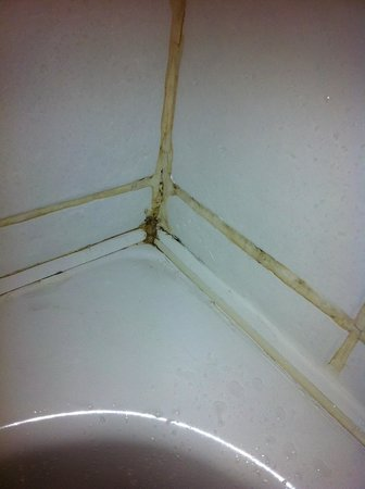 Great National Abbey Court Hotel & Spa : mould bathroom
