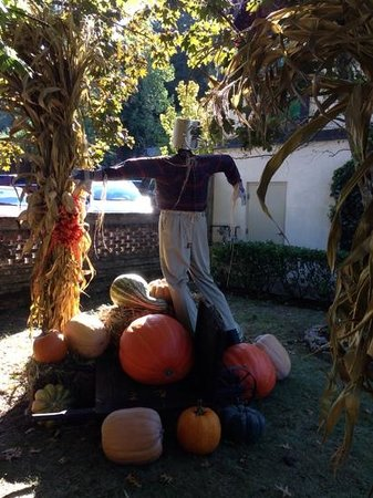 The Village Shops: Fall displays