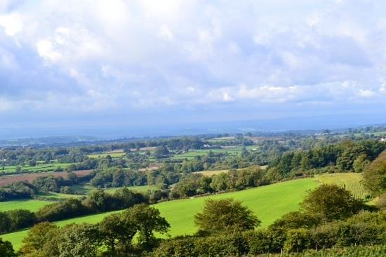 a view from cranmore tower