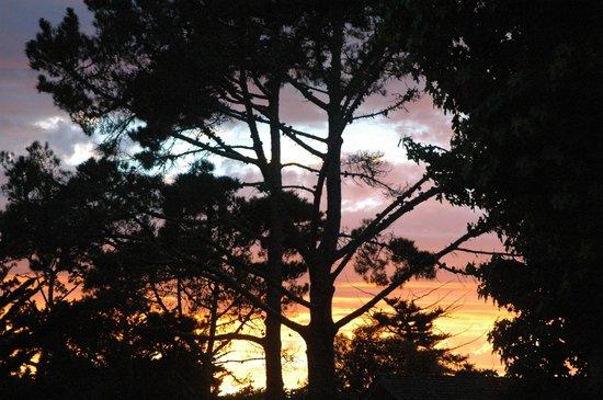 Tradewinds Carmel: Sunset
