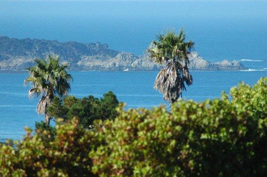 Tradewinds Carmel: View from Rm #19 balcony (w/zoom)