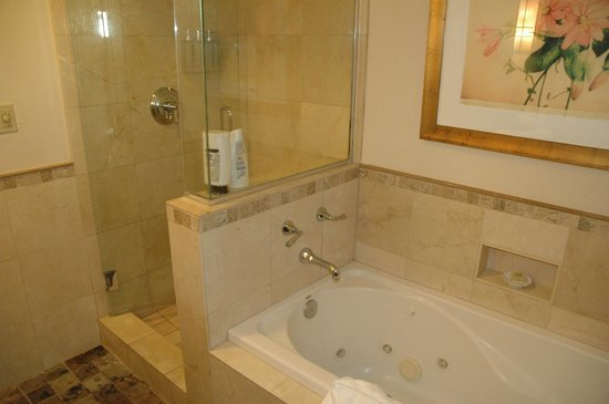 Tradewinds Carmel: Great shower and jet tub!
