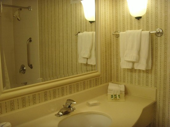 Hilton Garden Inn Scottsdale Old Town: Vanity Unit