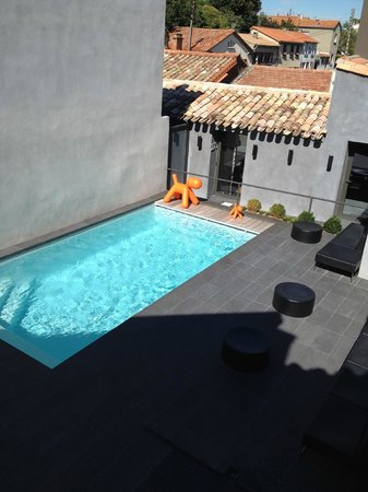 Hotel Octroi: The pool and private courtyard