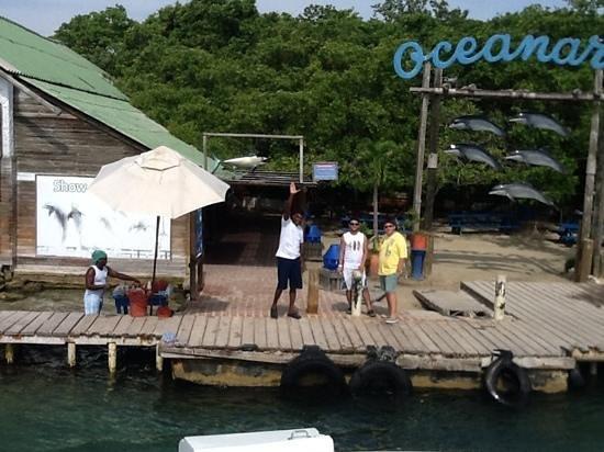 Tours in Rosario islands: Adios Isla del Rosario