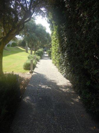 Almyra Hotel: Scented walkway