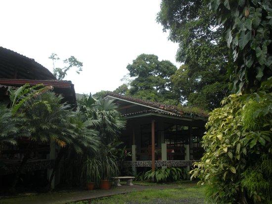 Pachira Lodge: Jardines