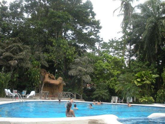 Pachira Lodge: Jardines y piscina