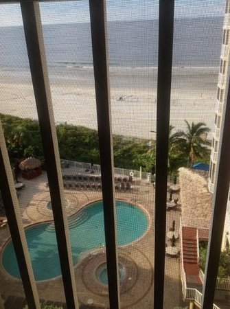 DiamondHead Beach Resort Hotel: shrubby pool deck