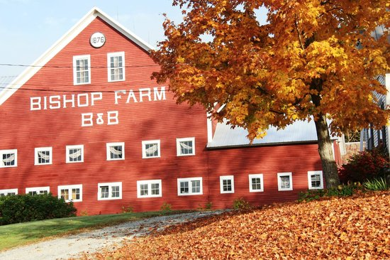 Bishop Farm Bed and Breakfast: Great Red Barn