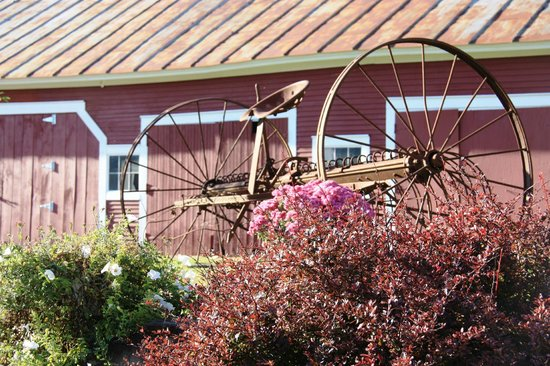 Bishop Farm Bed and Breakfast: Farm implements as part of Beautiful landscape
