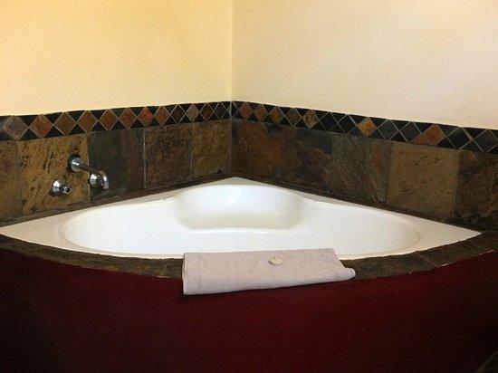 Zulu Nyala Heritage Safari Lodge: Salle de bain