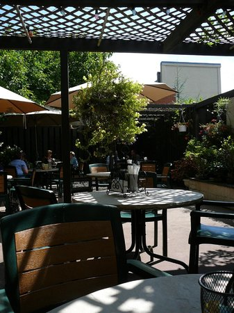 The Purple Foot: Garden patio