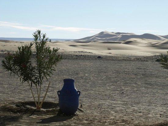 Etoile des Dunes : vue sur les dunes à partir de l'auberge