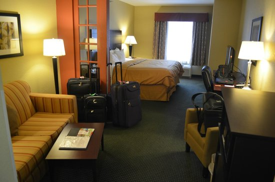 Comfort Suites Orlando Airport : Room