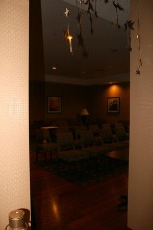 Hampton Inn New York - LaGuardia Airport: entrance to movie room